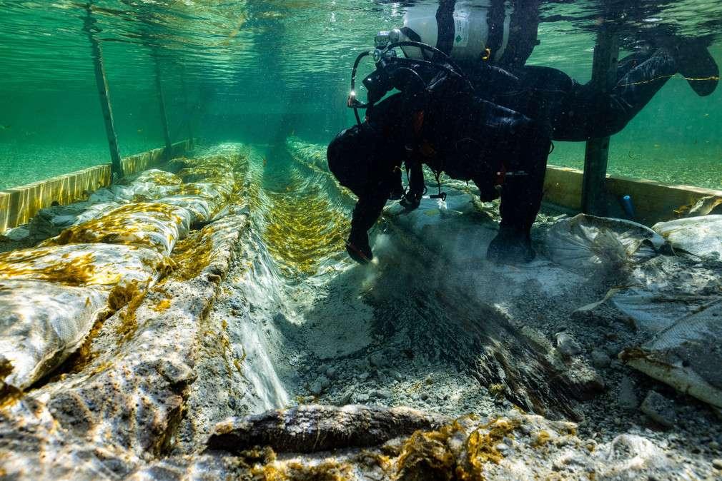 Archeolog pracujący na podwodnym stanowisku