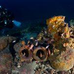 dwie starożytne amfory Morze Tyrreńskie
