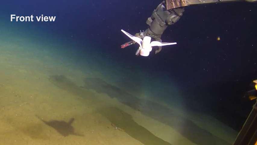 Chiński miękki robot do eksploracji oceanu