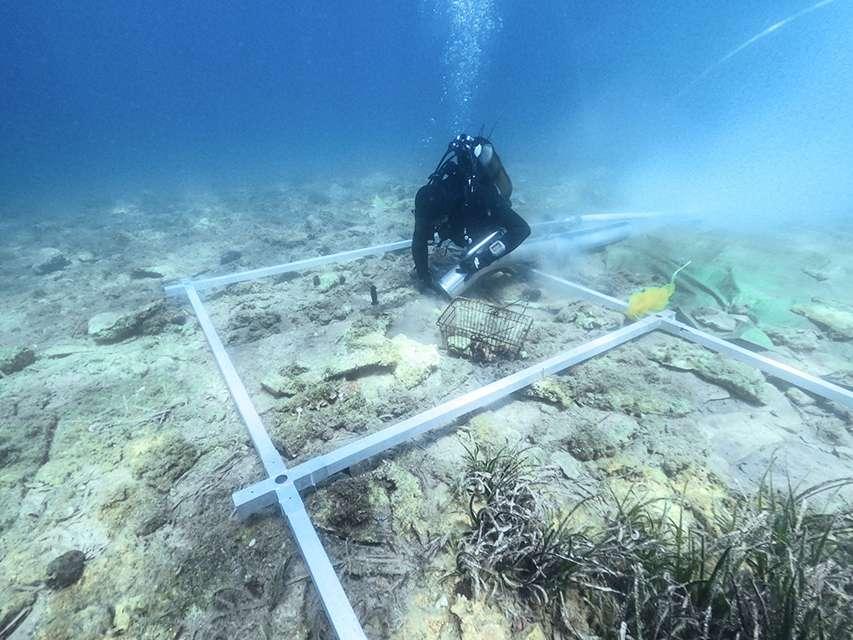 Badanie zatopionej osady u wybrzeży wyspy
