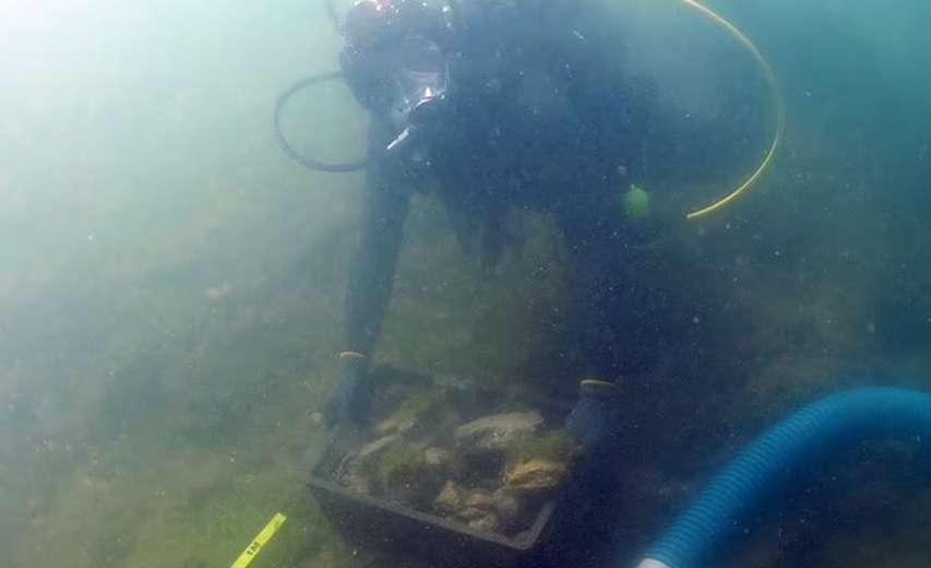 Archeolog bada wrak francuskiego okrętu Beaumont