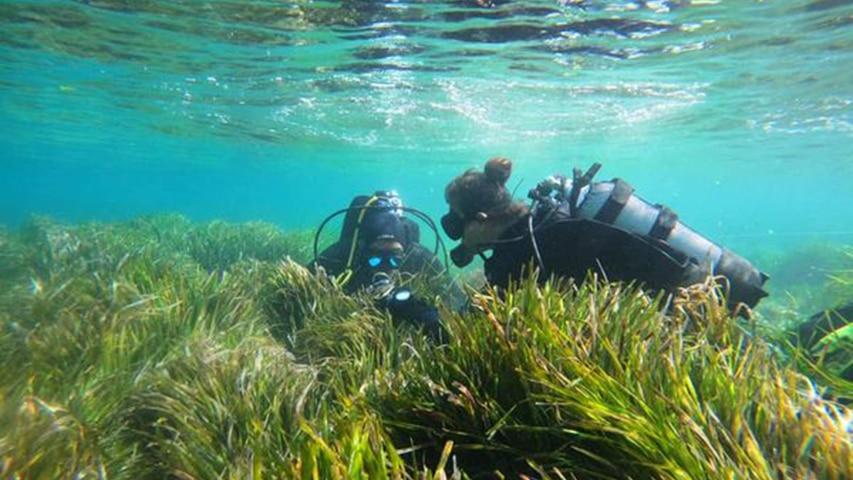 nurkowanie Limassol