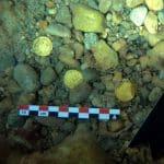 skarb 53 złotych monet Hiszpania divers24.pl